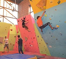 C'est en grimpant le long des pans de la salle d'escaladeque les sportifs rendent hommage à Chloé Graftiaux.